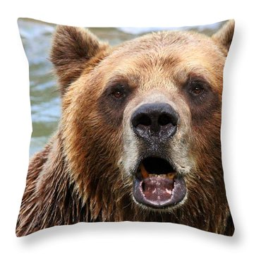 Canadian Grizzly Throw Pillow by Davandra Cribbie