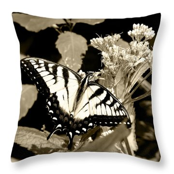 Canadian Tiger Swallowtail In Sepia Throw Pillow