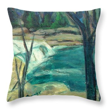 Canajoharie Creek Near Village Throw Pillow