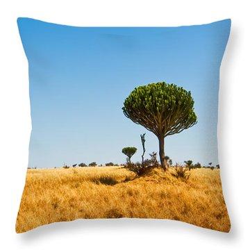 Candelabra Trees Throw Pillow by Adam Romanowicz