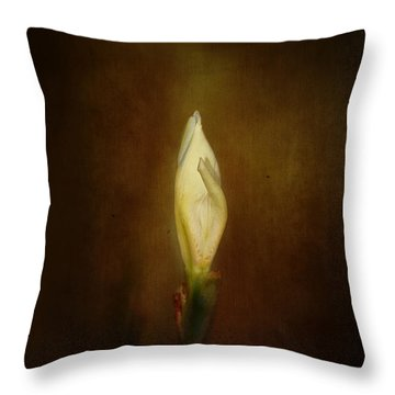 Candle In The Wind Throw Pillow by Anne Rodkin