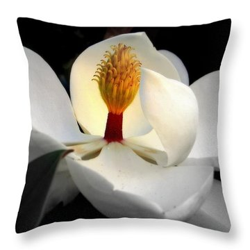 Candle In The Wind Throw Pillow by Karen Wiles