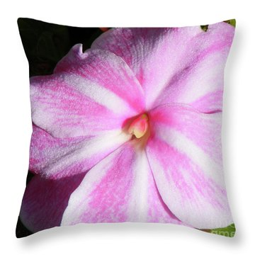 Candy Cane Impatiens Throw Pillow by Barbara Griffin
