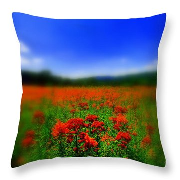 Candyland Throw Pillow by Neal Eslinger