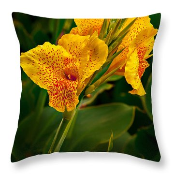 Canna Blossom Throw Pillow