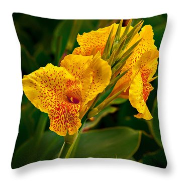 Canna Blossom Throw Pillow by Mary Jo Allen