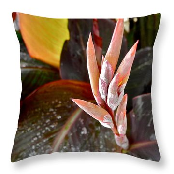 Canna Lilies IIi  Throw Pillow by Kirsten Giving