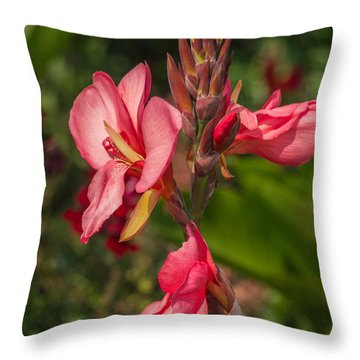 Canna Lily Throw Pillow by Jane Luxton