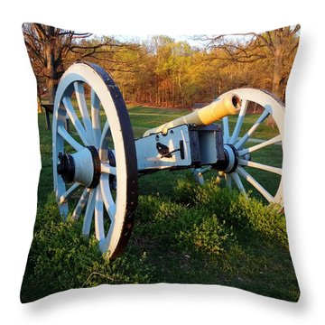 Cannon In The Grass Throw Pillow by Michael Porchik