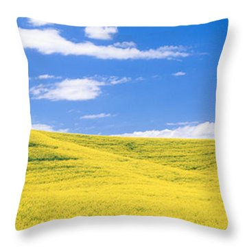 Canola Fields, Washington State, Usa Throw Pillow