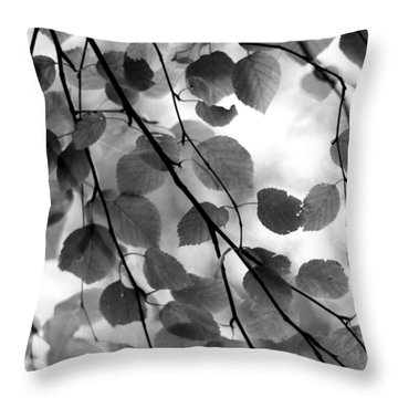 Canopy Throw Pillow