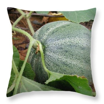 Cantaloupe  Throw Pillow