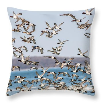 Canvasback Duck Chaos Throw Pillow