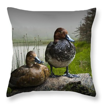 Canvasback Duck Pair By A Pond Throw Pillow