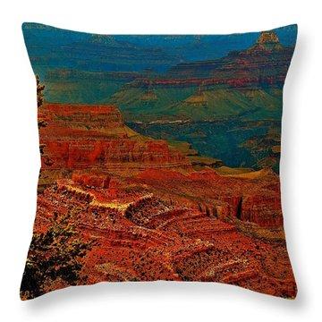 Canyon Colours Show Through Throw Pillow by Jim Hogg