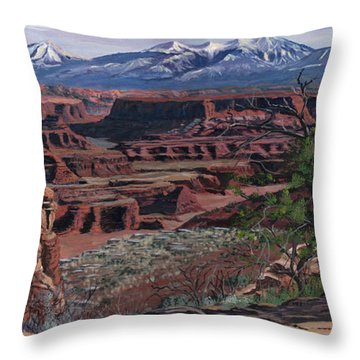 Dry Brush Throw Pillows