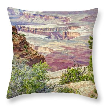 Canyon Lands Throw Pillow
