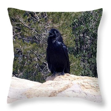 Canyon Raven Throw Pillow
