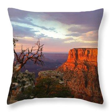 Canyon Rim Tree Throw Pillow by Heidi Smith