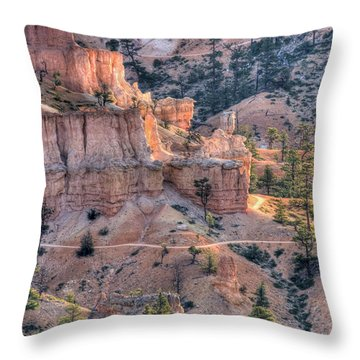 Canyon Trails Throw Pillow