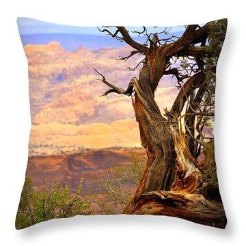 Canyon Vista 1 Throw Pillow by Marty Koch