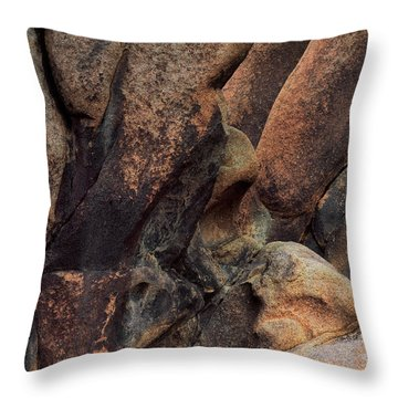 Canyon Wall Abstract Throw Pillow