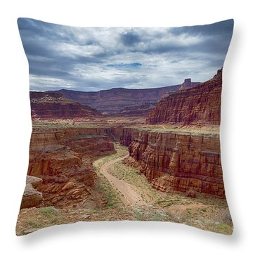 Throw Pillow featuring the photograph Canyonlands by Juergen Klust
