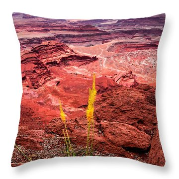 Canyonlands National Park Throw Pillow by Bonnie Fink