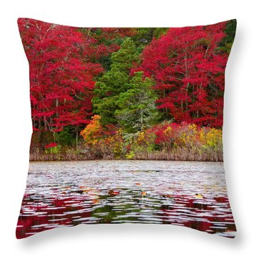 Cape Cod Autumn Throw Pillow by Dianne Cowen
