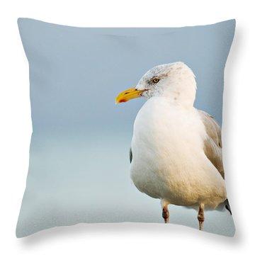 Cape Cod Seagull Throw Pillow
