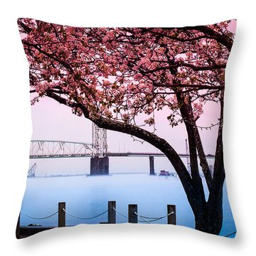 Cape Fear Of Wilmington Throw Pillow