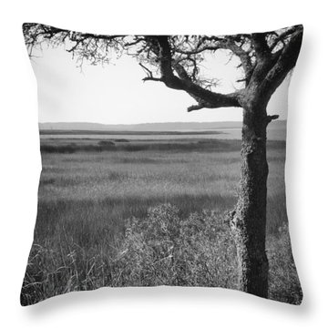 Cape Fear River View From Fort Fisher Nc Throw Pillow