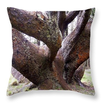 Cape Meares Octopus Tree Throw Pillow by Peter Mooyman
