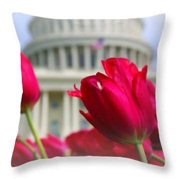 Throw Pillow featuring the photograph Capital Flowers  by John S