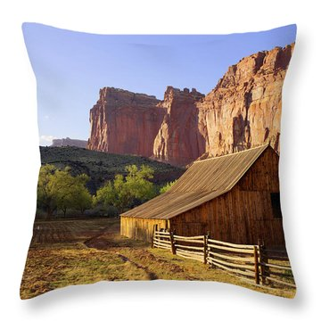Capitol Barn Throw Pillow