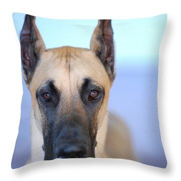 Cappy Throw Pillow by Lisa Phillips