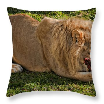 Captain Crunch Throw Pillow by Steve Harrington