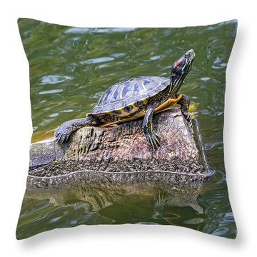 Captain Turtle Throw Pillow