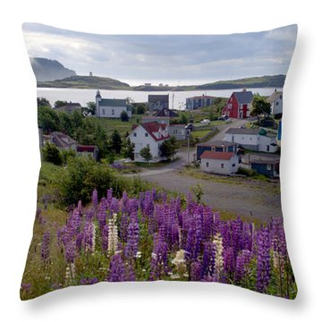 Captivated By Trinity Throw Pillow
