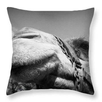 Captivating Camel Throw Pillow