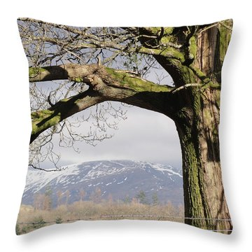 Throw Pillow featuring the photograph Capture The Moment by Tiffany Erdman