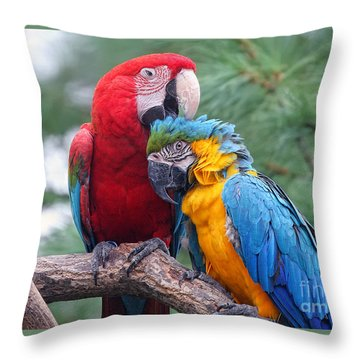 Grooming Session Throw Pillow