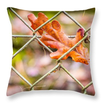 Captured Leaf Throw Pillow