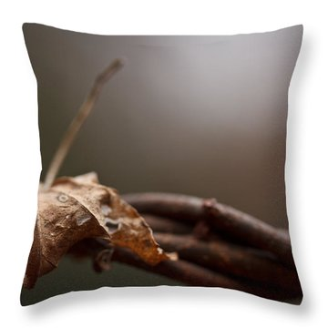 Captured Throw Pillow by Shane Holsclaw