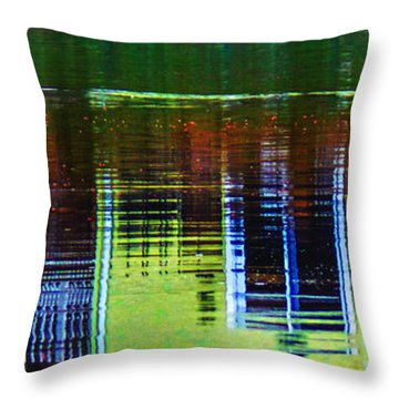 New England Landscape Illusion Throw Pillow