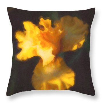 Capturing Sunshine  Throw Pillow by Omaste Witkowski