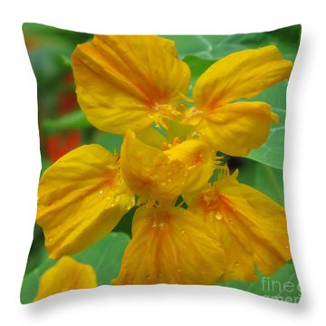 Capucine 12 Throw Pillow by France Laliberte