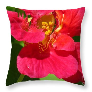 Capucine 6 Throw Pillow by France Laliberte