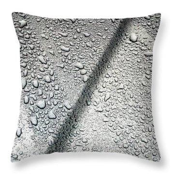 Car Bonnet B Throw Pillow by Jason Michael Roust