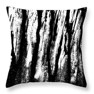 Car Door B Throw Pillow by Jason Michael Roust